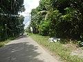 9759Poblacion III Del Carmen, Alaminos, Road 11.jpg