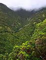 Açores 2010-07-20 (5068665946).jpg