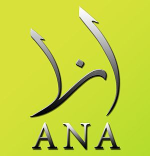 Rami Jarrah - ANA New-Media Association main logo