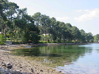 La Toja Island Island in Pontevedra, Spain