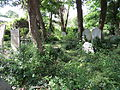 A view of the Congregationalist Cemetery before restoration work had began.jpg