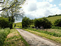 A view west, Woodnook Valley, Little Ponton, Lincolnshire, England 03.jpg
