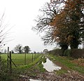 A waterlogged farm track - geograph.org.uk - 1060462.jpg