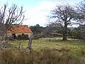 Abandoned croft near Acharry Mur - geograph.org.uk - 1173484.jpg