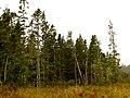 Acadia National Park (8111145752).jpg