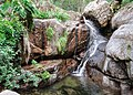 Aitone cascade Evisa.jpg