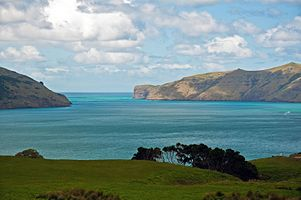 Akaroa Marine Reserve