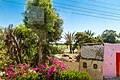 Al Bairat, Luxor, Luxor Governorate, Egypt - panoramio (47).jpg