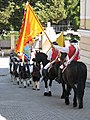 Alba Carolina Fortress 2011 - Changing the Guard-7.jpg