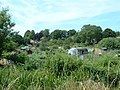 Allotments, Abbott's Barton, Winchester - geograph.org.uk - 27810.jpg