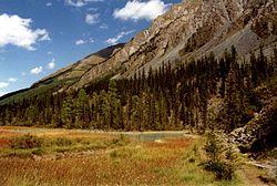 Altai, Valley Kutsherla in Altay Mountains
