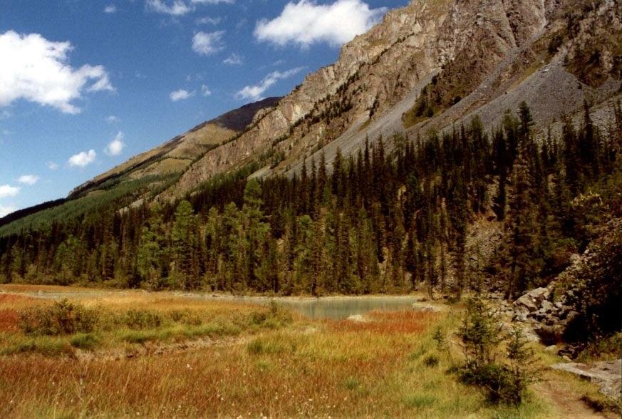 Altai Kutscherla-Tal
