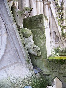 Amiens Cathedral - sculpted rodent.jpg