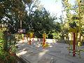 Amin al-Islami Park - Trees and Flowers - Nishapur 096.JPG