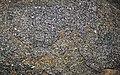 Amphibolite (Archean, 3.1-3.2 Ga; Norris South roadcut, Madison County, Montana, USA) 1 (45574881922).jpg