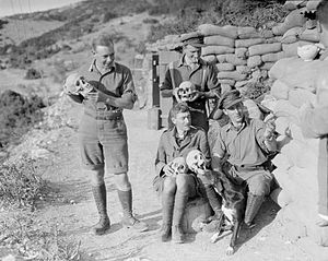 King's Shropshire Light Infantry - Officers of the 2nd King's Shropshire Light Infantry with skulls excavated during the construction of trenches and dugouts at the ancient Greek site of Amphipolis, 1916.