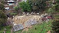 An aerial shot of an earthquake hit house taken from an IAF aircraft near Kathmandu.jpg