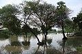 Andiarpalayam LAKE - panoramio (6).jpg
