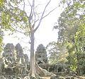 Angkor.- Banteay kdei.jpg