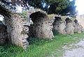 Anglona, altri resti - 2.jpg