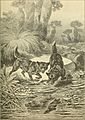 Animals in action; studies and stories of beasts, birds and reptiles; their habits, their homes and their peculiarities (1901) (14755130402).jpg