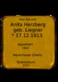 Anita Herzberg.png