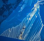 Another spectacular cruise northward along the NW coast of the Antarctic Peninsula. (25988962596).jpg