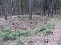 Antazavės sen., Lithuania - panoramio (53).jpg