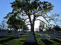 Arlington National Cemetery, Virginia (2013) - 02.JPG