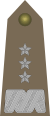 Army-POL-OF-08.svg