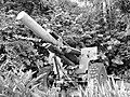 ArtilleryGun-KentRidgePark-Singapore-20090416.jpg