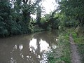 Ashby Canal - geograph.org.uk - 227076.jpg