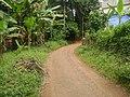 Asramam Road venkida - panoramio.jpg