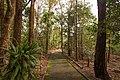 Auburn NSW 2144, Australia - panoramio (71).jpg