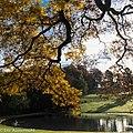 Autumn Feelings (181111029).jpeg