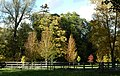 Autumn Trees. Turweston. - panoramio.jpg