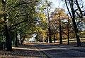 Autumn in Greenwich Park - geograph.org.uk - 2194690.jpg