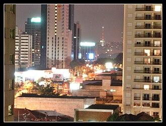 Cidade Limpa - Before Cidade Limpa: Ibirapuera Ave. (November 2005)