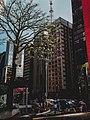 Avenida Paulista, São Paulo, SP, Brasil. (32032772081).jpg