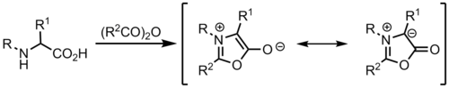 Formation of azomethine ylide from munchnone.