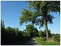 Bönen, Germany - panoramio (135).jpg