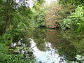 Badger Dingle - Upper Pool 02.jpg