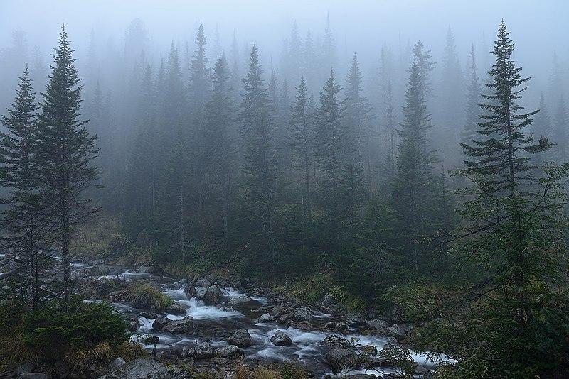 File:Baikal reservate.jpg