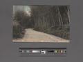 Bamboo road of Mogi, Nagasaki (NYPL Hades-2360330-4044129).tiff