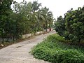 Ban Rung Daeng - panoramio - CHAMRAT CHAROENKHET (7).jpg