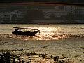 Bangkok 08 - 14 - Sunset over the river (3166213313).jpg