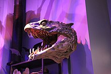 Basilisk Head (Harry Potter).jpg