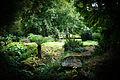 Batsford Arboretum-21802768859.jpg