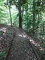 Battle Creek Cypress Swamp 65.jpg