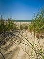 Beach dune Rennesse Holland Düne (19707922093).jpg